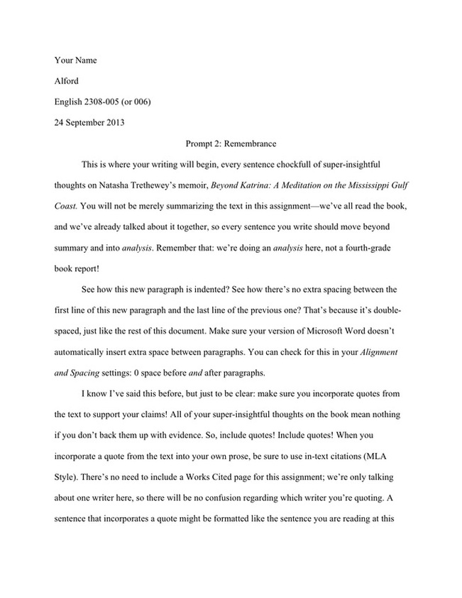 media evaluation essay